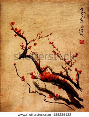 Sakura, cherry blossom plum chinese brush painting Red cherry blossom chinese brush painting - stock photo