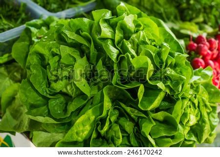 Salad at marketplace. - stock photo