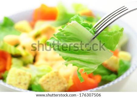 Salad close up - stock photo