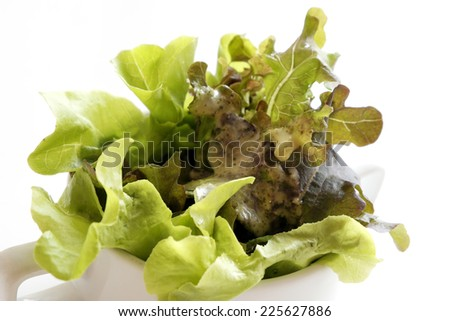Salad for a healthy cup of white - stock photo
