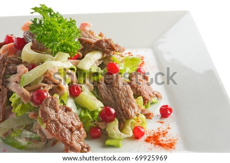Salad from slices of the fried beef, cucumbers and a cowberry with sauce from olive oil of balsam vinegar on a light plate. A shot horizontal, focus in the center a shot - stock photo