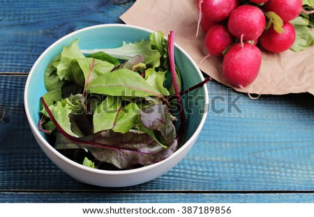 Salad in bowl and radishes on blue table. Fresh raw food diet salad.  Vegetarian food concept, healthy life style - stock photo