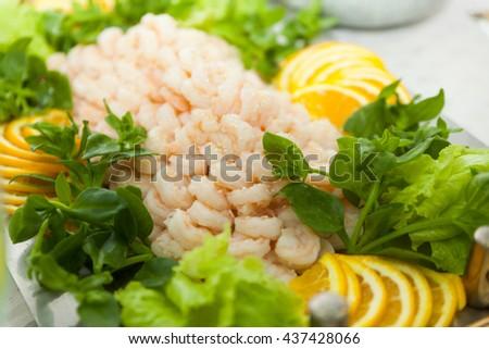 salad of shrimp, mixed greens - stock photo