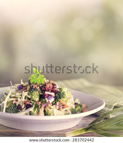 Salad With Broccoli,Cauliflower,Red Cabbage,Sunflower Seeds,Dried Cranberries and Bacon - stock photo