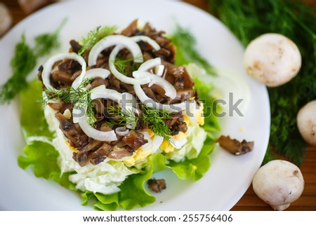salad with cabbage, eggs and mushrooms on a plate - stock photo