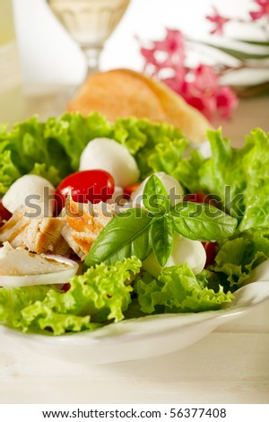 salad with chicken mozzarella and tomatoes - stock photo