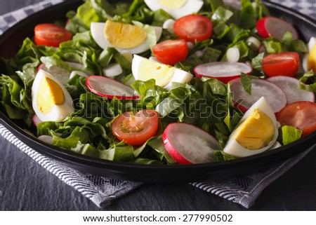 Salad with eggs and spring vegetables close-up on the table. Horizontal - stock photo