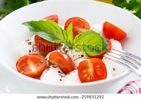 salad with mozzarella, basil and cherry tomatoes, close-up, horizontal - stock photo