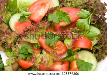 salad with tomatoes and herbs on a white background