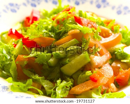 Salad with vegetables on white plate - stock photo