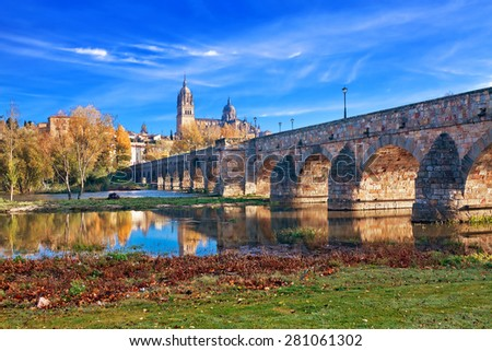 Salamanca Cathedral. Castile and Leon, Spain - stock photo