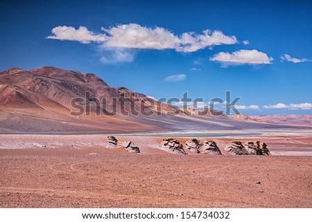 Salar Aguas Calientes, desert Atacama, Chile - stock photo