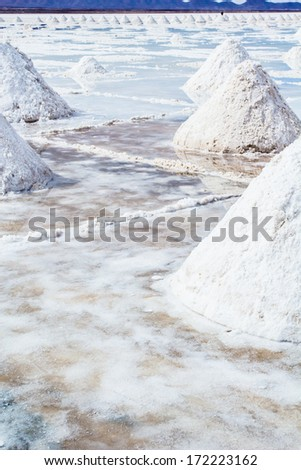 Salar de Uyuni (Salt Flat), Bolivia  - stock photo