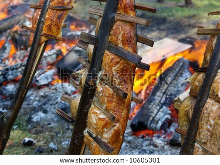 Salmon cooking and smoking on sticks next to a fire. - stock photo