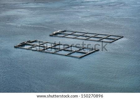 Salmon farming - stock photo