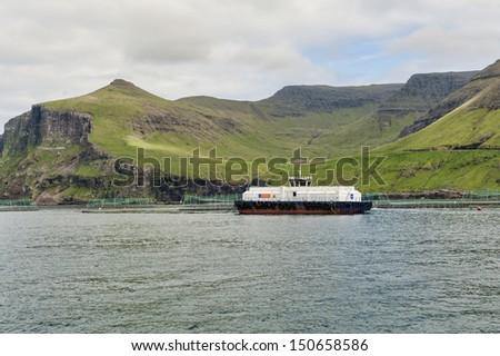 Salmon farming in the Faroe Islands - stock photo