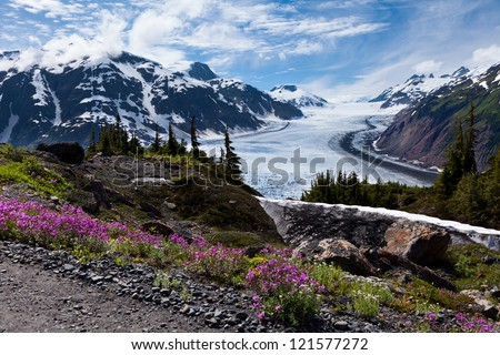 Salmon Glacier at Hyder Alaska - stock photo
