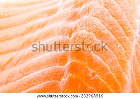 Salmon meat background