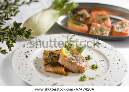 salmon with fennel - stock photo