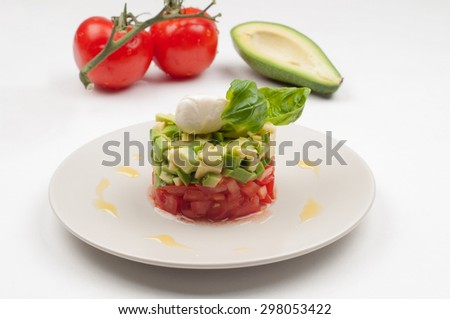 Salsa salad on the plate with tomatoes and avocado on the light background - stock photo