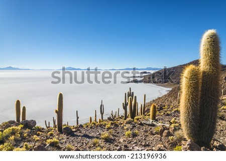 Salt Desert, Salar de Uyuni, Bol�via - stock photo