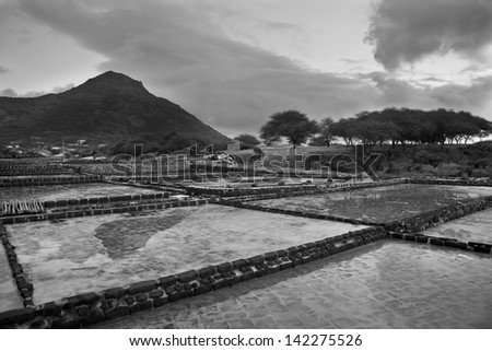 Salt farm in Tamarin, Mauritius island - stock photo