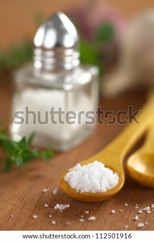 Salt on wooden spoon with salt shaker, thyme and garlic in the back (Selective Focus, Focus on the front of the salt on the spoon) - stock photo