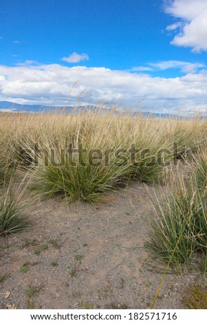 Salt steppe, lifeless scorched earth - stock photo