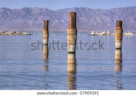 Salton Sea Bombay Beach - stock photo