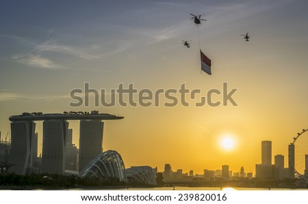 Salute to the Nation - stock photo