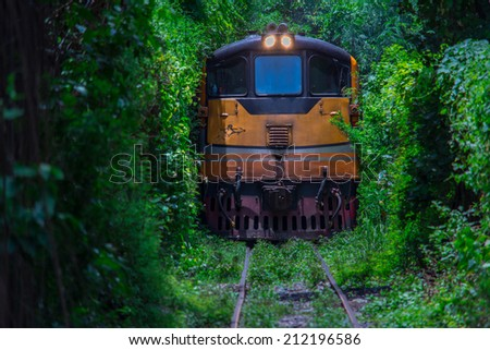 Same Train running in Natural  tunnel of love formed by trees. in bangkok,Thailand - stock photo
