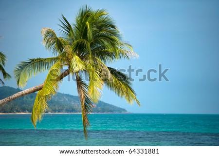 Samui island, Thailand - stock photo