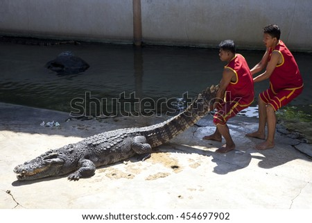 SAMUTPRAKARN,THAILAND - July 18: crocodile show at crocodile farm on July 18,2016 in Samutprakarn,Thailand. This exciting show is very famous among tourist and Thai people - stock photo