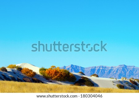San Andres Mountains and autumn dunes - stock photo