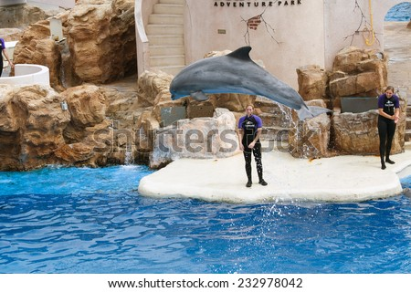 SAN DIEGO, CALIFORNIA, USA - JUNE 3, 2009: There is a representation. Dolphin Show. The dolphins who has jumped out of water. Sea World - stock photo