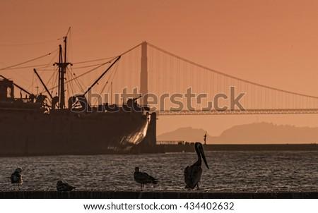 San Francisco shore sunset - stock photo