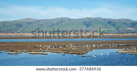 San Francisco South and East Bay Landscape, Northern California - stock photo