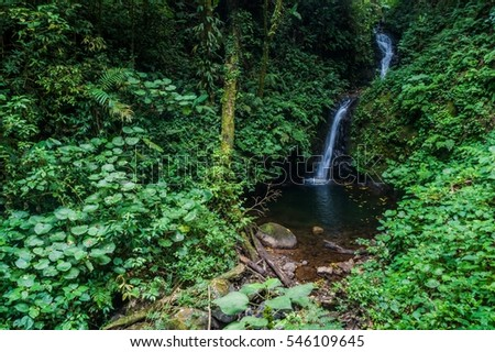 San Luis Waterfall About 10 Kilometers From Monteverde Photo Andrés Madrigal