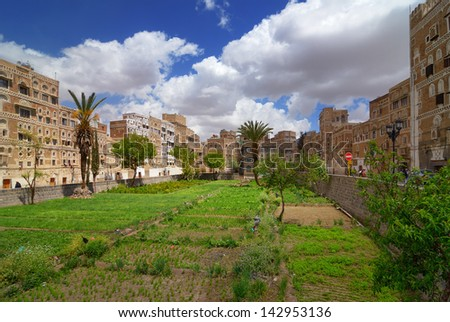 SANAA, YEMEN - MAR 6: Vegetable garden among traditional architecture on Mar 6, 2010 in Sanaa, Yemen. Inhabited for more than 2.500 years, the Old City of Sanaa is a UNESCO World Heritage City - stock photo