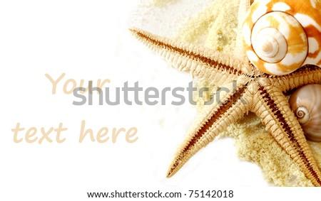 Sand and seashells  over white.Vacation concept .seashells border - stock photo