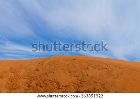 Sand and sky background. Old sand quarry with a little sprouts of grass and an insects tracks under the spring sky - stock photo
