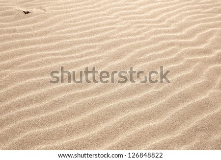 sand as a backdrop. dune - stock photo