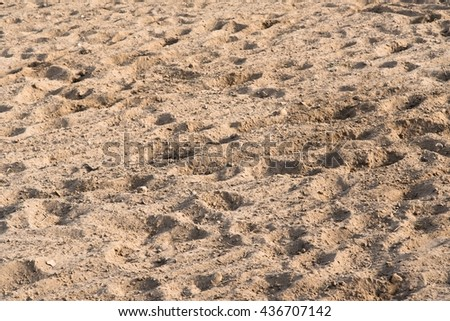 Sand background. Natural background