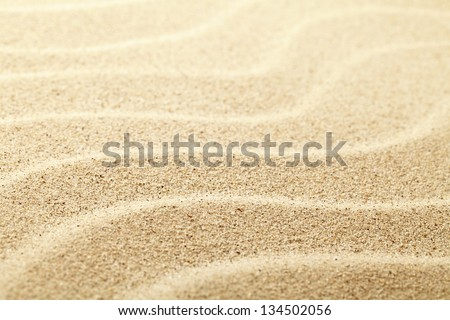 Sand background. Sandy beach texture. Macro shot. Copy space - stock photo