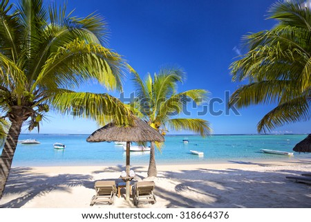 Sand beach, palms, lounge chairs with umbrella in Mauritius Island - stock photo