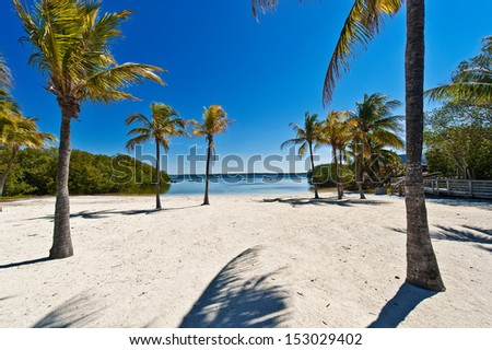 sand beach under palm trees - Florida Keys - stock photo