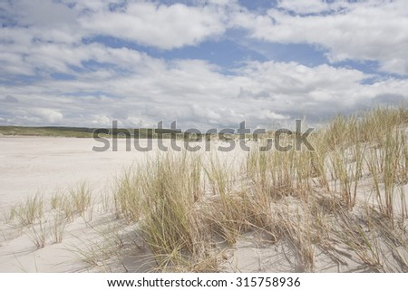 Sand dune Ammophila vegetation (marram grass or beach grass) on the west coast of Ireland with clouds on a deserted sandy beach  in summer in county Donegal. - stock photo
