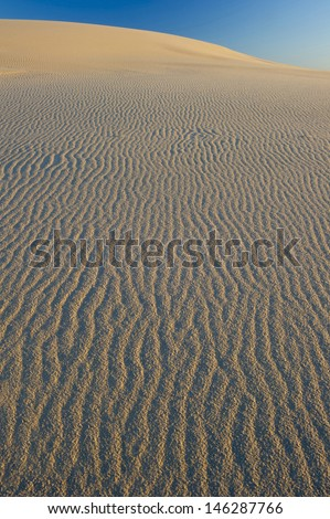 sand dune texture of windblown patterned sand under blue sky  , myall lakes, australia - stock photo