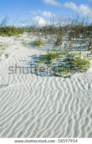 Sand Dune with rippled pattern - stock photo