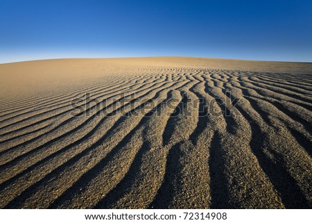 Sand dunes and bright blue sky. Curonian Spit, Russia